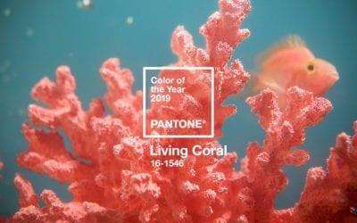 A Pantone já anunciou a Cor do Ano 2019, vem conhecer o Living Coral!